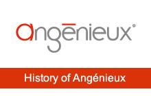 アンジェニューの歴史