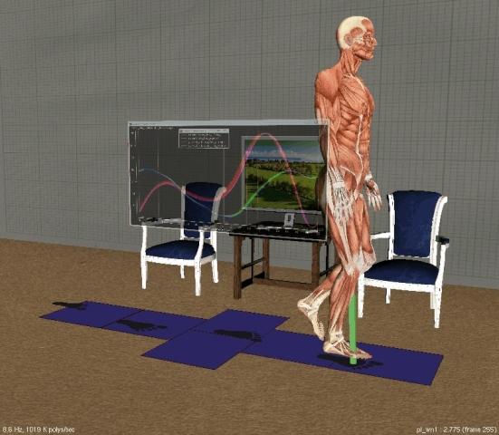 筋骨格モデリング・解析システム SIMM
