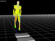 三次元空間上に解析結果を視覚的に表示